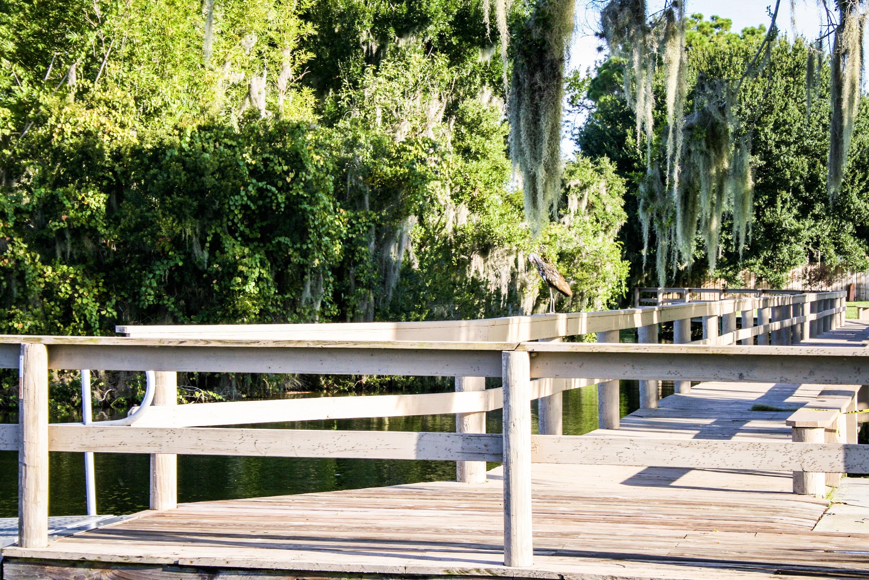 Walking Bridge Lake Placid Florida Remax Realty Plus